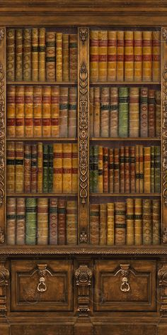 ornatebookcase-tiles.png97483720-a4a5-408e-9a62-b246bbe15237Original.jpg (1024×2048)