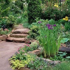 Path with Rustic Appeal