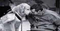 Emotional Support Dog Laws