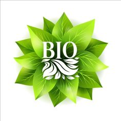 Bio green leaves vector material 04 - https://gooloc.com/bio-green-leaves-vector-material-04/?utm_source=PN&utm_medium=gooloc77%40gmail.com&utm_campaign=SNAP%2Bfrom%2BGooLoc