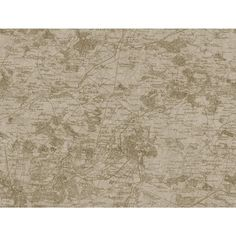 View the York Wallcoverings GX8174 Passport Vintage Map Wallpaper at LightingDirect.com.