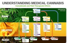 'This is an awesome chart to show someone how the elements of Cannabis change. There are therapeutic/health benefits in every stage but in the heated you will find the most powerful. They all have benefits, many choose to juice and use raw and others heat. Vaporizers tend to allow cannabinoids to be released without the destruction of almost all but THC with a heated flame. From C.B.D. to Cannabis and concentrates of both - vaporizing has became the healthy way for medicinal use (or…