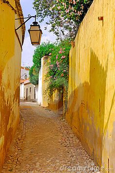 Portugal, area of Algarve, Silves: typical architecture, narrow typical street with yellow garden walls , blue sky and green vegetation dominated by a traditional lamppost