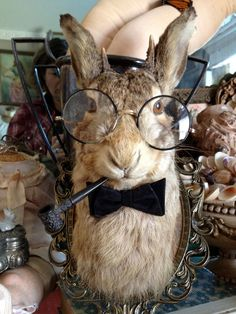 The Accountant An Antique Taxidermy Hare Jackalope That Is All About The Business. $425.99, via Etsy.