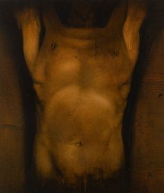 """""""Torso Variations III"""" - Tomas Watson, 2009, oil on linen; London, England {male human anatomy chest stomach painting}"""