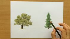 How to Draw Trees With Colored Pencils - Drawing Tutorial