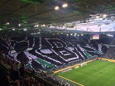 Tifo Borussia Mönchengladbach