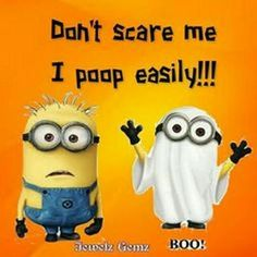 29 Funny Minion Quotes Then don't go giving 100%! Just pray it's not an im... - 100, 29, Dont, Funny, funny minion quotes, giving, Im, Minion, Minion Quote Of The Day, pray, Quotes - Minion-Quotes.com