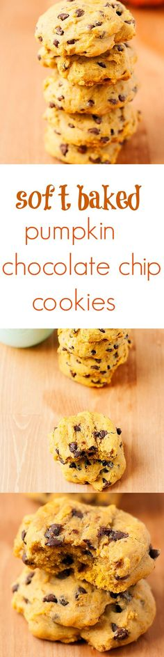soft baked pumpkin chocolate chip cookies - Heather's French Press