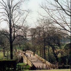 Pollok Park Glasgow. Cold but beautiful