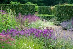 Scampston Hall - Piet Oudolf Note the repeat of flowercolor with a green/neutral middle ground.