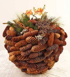 Mooie basis van Picea kegels