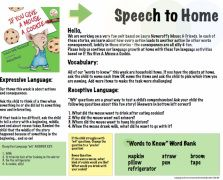 {speech to home} therapy summaries