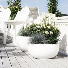 Generous, curvy planters, green arrangements and adirondack chairs, refreshing cosiness