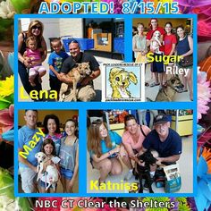 #cleartheshelters #cleartheshelters2015 #nbcct PetSmart in Manchester, CT