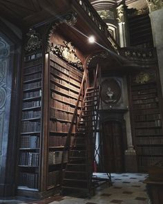 schwarzkopfnonne: Section XIV (Prunksaal der. Harry Potter Aesthetic, Slytherin Aesthetic, Book Aesthetic, Aesthetic Pictures, Paradis Sombre, Hogwarts, My Academia, Mundo Harry Potter, Different Aesthetics