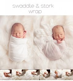Strike a Pose ~ Charleston Newborn Photography