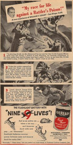 Eveready Battery Race For Life, Old Ads, Vintage Ads, Battery Park, Advertising, Household Products, Marketing, Cats, Posters