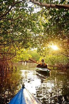 Florida Outdoor Activities - Adventure Guide, Kayaking Trips, Kayak Tours, Adventures, Nature, Wildlife, State Parks, Islands, Great Outdoors, Recreation, Summer Vacation, Family Trip, Weekend Getaway, Experience, Things to Do | Florida Travel + Life