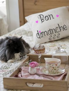 Topic des chats - Page 12 593982607831f35ad3c99ff097464829--sunday-morning-morning-coffee