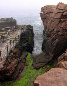 To Do: Acadia National Park. Maine.