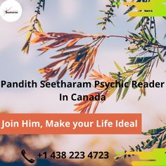 Get a full life solution with Pandith Seetharam because he is the best Indian astrologer in Quebec. He is offering his Astor knowledge to relieve your life And Provides better life as you want to live; he is known as a Psychic Reader in Montreal as well, Pandith Seetharam made thousands of people's life happy if you also want a better life then connect with him or call him.
