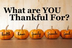 We are just five short weeks away from closing out Calendar Year 2016. Tomorrow is Thanksgiving Day –an annual national holiday in North America that is marked by religious observances and a…