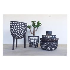 Polka dots planters and bowls #maryamriazi . . . . #ceramic #pottery #potterystudio #maker #handmade #clay #stoneware #madeinla #ceramicartist #keramik #vase #ceramicplanter #planter #ceramicsculpture #bowl #ceramicbowls