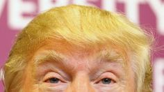 89% of Nevada County residents support everything about Donald Trump, except his hair.