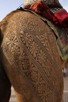 Pakistan Camel Art :  It takes 3 years to make an engraved tattoo on a camel. During the first 2 years, trimming occurs as the hair grows out.  They then continue to trim and dye the camel hair.