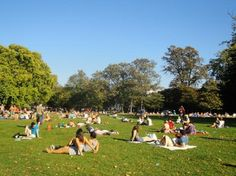 Clapham common in the summer