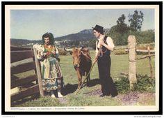 VIANA DO CASTELO - COSTUMES - Namorados ( Geraz do Lima) ( Ed. M. Pacheco Lda. Nº 8) carte postale
