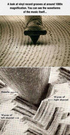 Magnified needle on a vinyl record.