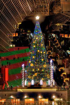 Staring at the Christmas tree at Kyoto Train Station , Japan Christmas Lights, Christmas Tree, Beautiful Places In Japan, Train Station, Lighting Ideas, Kyoto, World, Holiday Decor, Christmas Fairy Lights