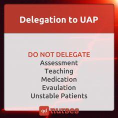 Delegation to UAP