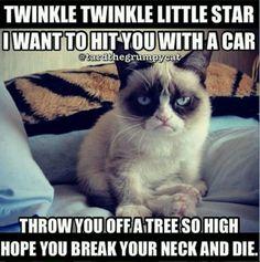 DYING. Grumpy Cat