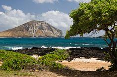 Makapu'u Beach by David Pope on 500px