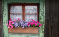 Les Praz window flowers