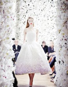 Christian Dior Haute Couture Fall/Winter 2012 photographed by Daniel Beres