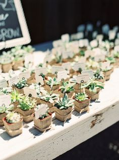 It must be like this! Succulent escort cards that double as favors, photo by Danielle Poff http://ruffledblog.com/dana-powers-house-wedding #weddingfavors #escortcards