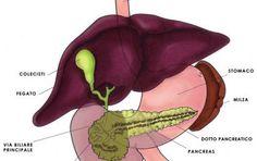 Calcoli alla cistifellea (o colecisti): sintomi e rimozione - La cistifellea è un piccolo organo posto sotto il fegato in cui si conserva la bile che serve per il metabolismo dei grassi. E' soggetta a formazione di calcoli, vediamo i sintomi.