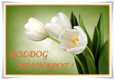 Valentin Nap, Name Day, Birthday, Birthdays, Saint Name Day, Birth Day