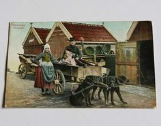 VOLENDAM Hondenkar - Dutch DOG CART old postcard
