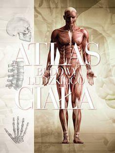 Atlas budowy ludzkiego ciała - Firma Księgarska Olesiejuk Spółka z ograniczoną odpowiedzialnością S.K.A. dawniej Firma Księgarska Jacek Olesiejuk Sp. z o.o.