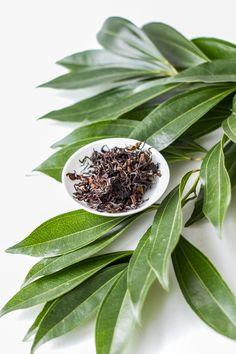"""Oriental Beauty is a """"bug-bitten"""" oolong tea from Taiwan."""