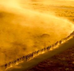 glowing dust by bikingrepost Mtb Bike, Bicycle, Mountain Biking, Country Roads, The Incredibles, Sport Events, Instagram Posts, Cape, Outdoor