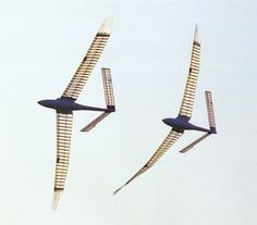 cover picture of the handbook  How ornithopters fly'