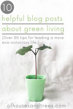 Green Living Tips Sustainable Design, Sustainable Living, Green Living Tips, Base Foods, Handmade Home Decor, Go Green, Live For Yourself, Consciousness, Sustainability