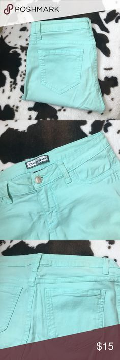 Mint Green Skinny Jeans Mint Green Skinny Jeans ~ purchased from an online boutique and only worn a handful of times 🍬 Pants Skinny