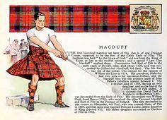 MacDuff Family crest - Google Search